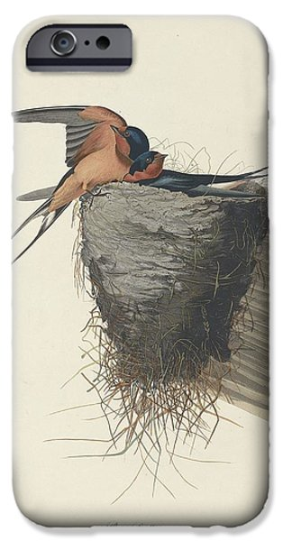 Barn Swallow Drawings iPhone Cases - Barn Swallow iPhone Case by John James Audubon