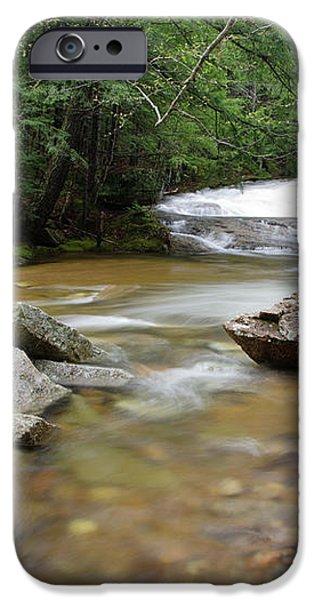 Bartlett Experimental Forest - Bartlett New Hampshire USA iPhone Case by Erin Paul Donovan