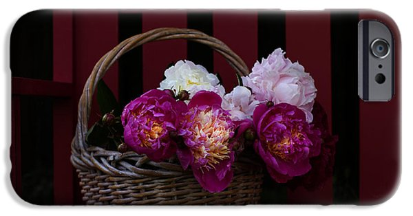 Peonies iPhone Cases - Basket on the Bench iPhone Case by Rebecca Cozart
