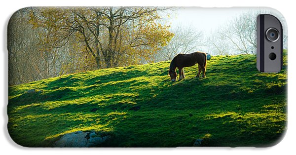 Fauna iPhone Cases - Basque countryside iPhone Case by Antonio Costa