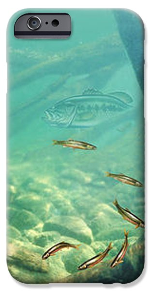 Bass Lake iPhone Case by JQ Licensing