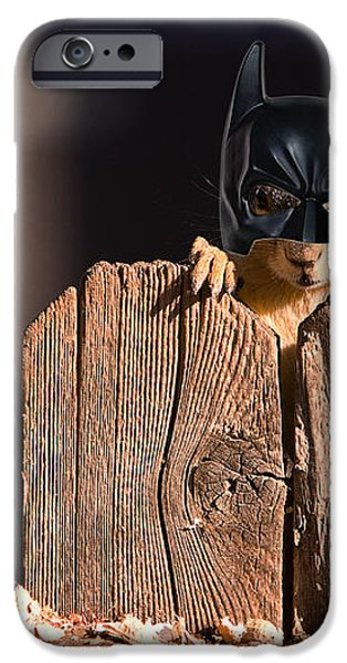 Bat Squirrel  the Cape Crusader known for putting away nuts.  iPhone Case by James BO  Insogna