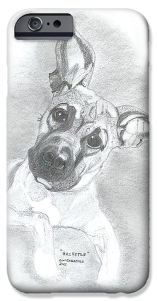 Husky Drawings iPhone Cases - Baxter iPhone Case by Don  Gallacher
