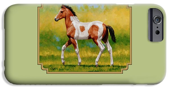 Pinto Paintings iPhone Cases - Bay Pinto Foal iPhone Case by Crista Forest