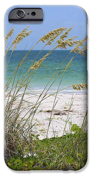 Beach Landscape iPhone Cases - Beach through Sea Oats iPhone Case by Carol Groenen
