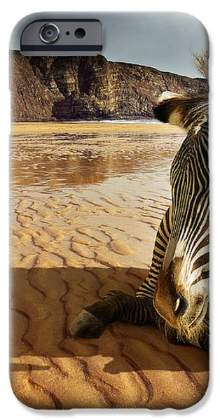 Beach Zebra iPhone Case by Carlos Caetano