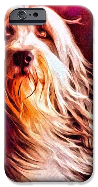 Digital Designs iPhone Cases - Bearded Collie Portrait 2 iPhone Case by Scott Wallace