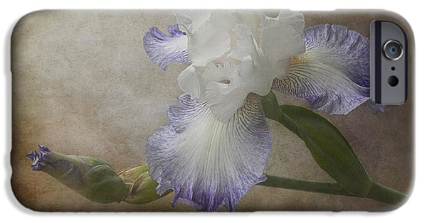 One iPhone Cases - Bearded Iris iPhone Case by Patti Deters