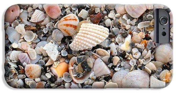 Beach iPhone Cases - Beautiful Broken Shells iPhone Case by Carol Groenen