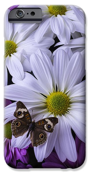 Insects Photographs iPhone Cases - Beautiful Brown Butterfly iPhone Case by Garry Gay