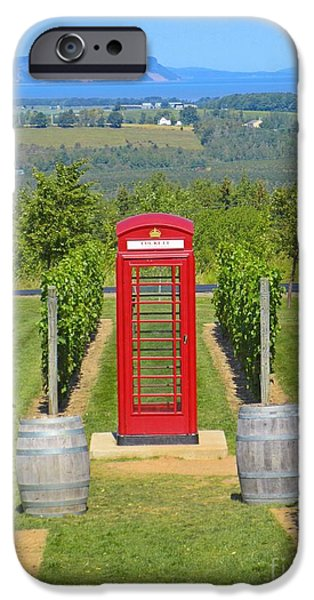 Food And Beverage Sculptures iPhone Cases - Beautiful Nova Scotia Vineyard iPhone Case by John Malone