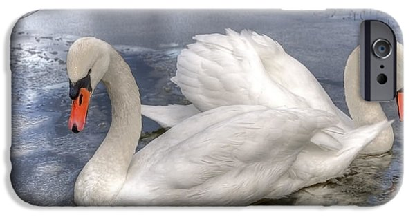 Swans... iPhone Cases - Beautiful Swans iPhone Case by Svetlana Sewell