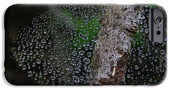 Raining iPhone Cases - Beautiful wet web iPhone Case by Jeff  Swan