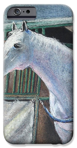 Horse Pastels iPhone Cases - Beauty iPhone Case by Arline Wagner