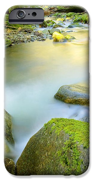 Beauty Creek iPhone Case by Idaho Scenic Images Linda Lantzy