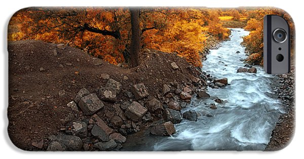 River iPhone Cases - Beauty Of The Nature iPhone Case by Charuhas Images