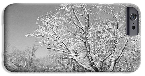 Snow Scene iPhone Cases - Beauty of Winter iPhone Case by Marcia Lee Jones