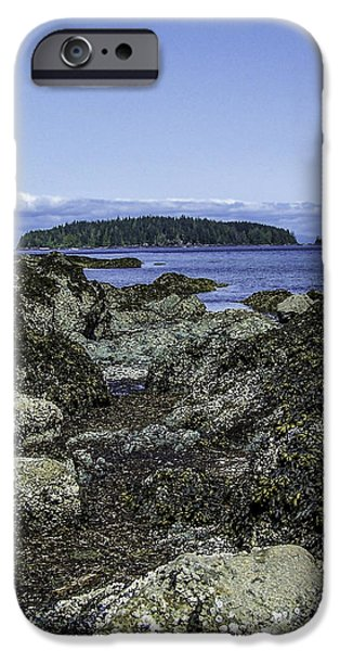Port Hardy iPhone Cases - Morning Fog In The Harbor 1 iPhone Case by Larry Kohlruss