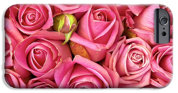 Best Sellers -  - Floral Photographs iPhone Cases - Bed Of Roses iPhone Case by Carlos Caetano
