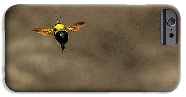 Spring Tapestries - Textiles iPhone Cases - Bee Dance iPhone Case by James Hennis