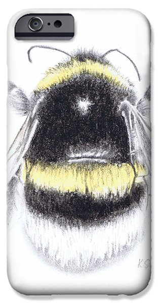 Recently Sold -  - Nature Study Paintings iPhone Cases - Bee iPhone Case by Katy Scott Ricketts