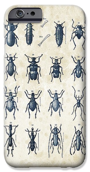 Beetle iPhone Cases - Beetles - 1897 - 03 iPhone Case by Aged Pixel