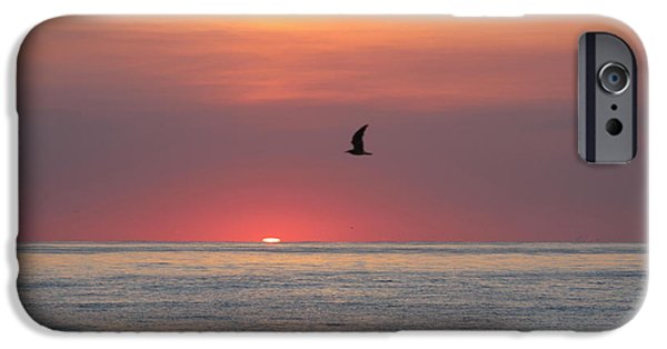 Sea Birds iPhone Cases - Beginning The Day iPhone Case by Robert Banach