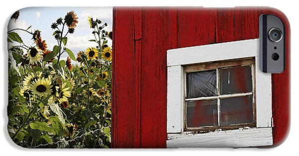 Barns iPhone Cases - Behind the Barn iPhone Case by Rebecca Cozart