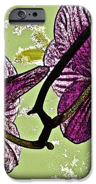 Behind the Orchids iPhone Case by Gwyn Newcombe