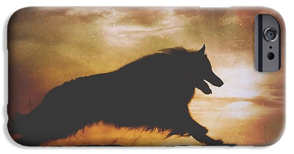 Black Dog iPhone Cases - Belgian Sheepdog Art 7 iPhone Case by Wolf Shadow  Photography
