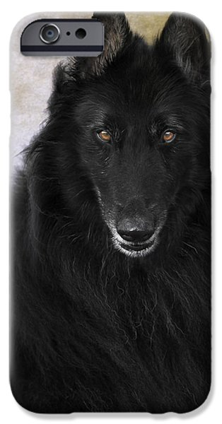 Black Dog iPhone Cases - Belgian Shepherd Portrait 6 iPhone Case by Wolf Shadow  Photography