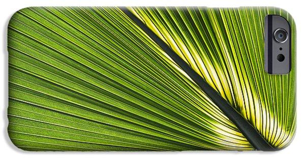 Bermudas iPhone Cases - Bermuda Palmetto Leaf iPhone Case by Tim Gainey