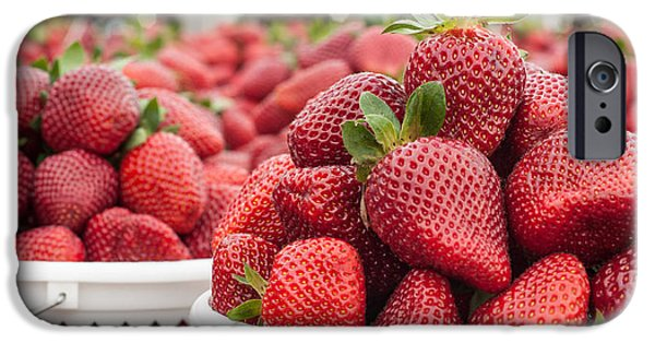 Agricultural iPhone Cases - Berries-pano iPhone Case by Joye Ardyn Durham