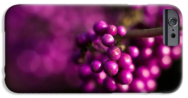 Berry iPhone Cases - Berries Still Life iPhone Case by Mike Reid