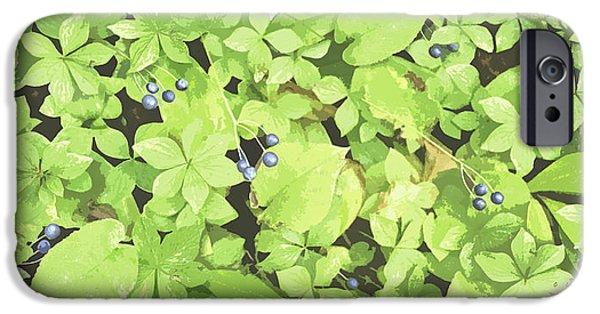 Berry Paintings iPhone Cases - Berry Landscape iPhone Case by JQ Licensing