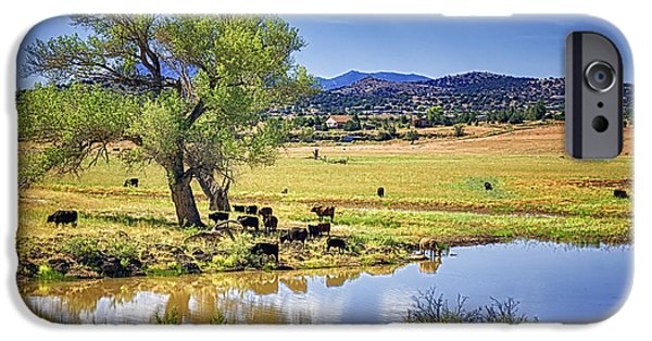 Prescott iPhone Cases - Beside Still Waters iPhone Case by Priscilla Burgers