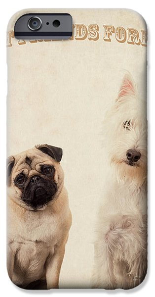 Forever iPhone Cases - Best Friends Forever iPhone Case by Edward Fielding
