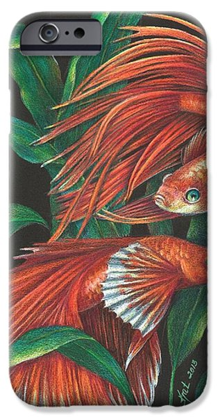 Betta iPhone Cases - Betta iPhone Case by Kat Ewing