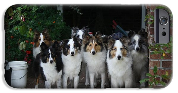 Dogs iPhone Cases - Better Get Those Dogs in the House iPhone Case by Kathryn Meyer