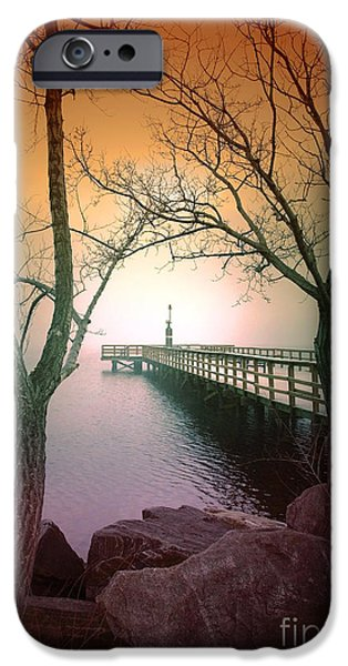Tara Turner iPhone Cases - Between Two trees iPhone Case by Tara Turner