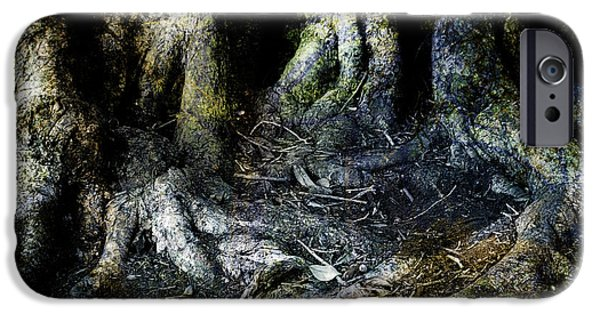 Nature Abstracts iPhone Cases - Beyond the Forest Edge iPhone Case by Kelly Jade King