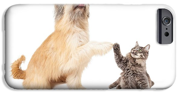 Domestic Animal iPhone Cases - Big Dog and Little Cat High Five iPhone Case by Susan  Schmitz