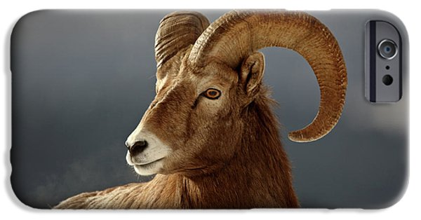 Rocky Digital Art iPhone Cases - Bighorn Sheep in winter iPhone Case by Mark Duffy