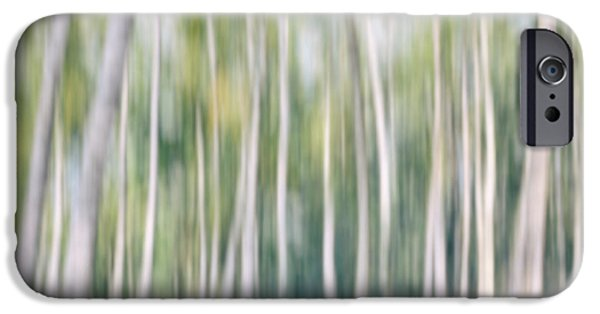 Abstract Digital iPhone Cases - Birch abstract 2 iPhone Case by SK Pfphotography