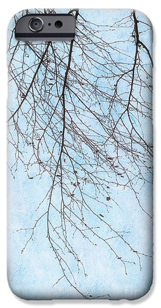 Abstract Digital iPhone Cases - Birch branches with leaves iPhone Case by SK Pfphotography