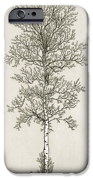 Printmaking iPhone Cases - Birch Tree iPhone Case by Charles Harden