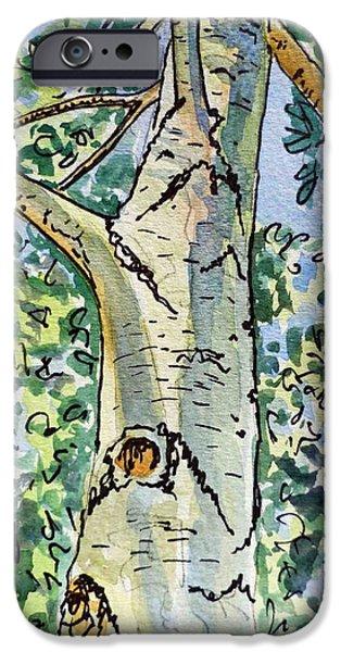 Birch Tree Sketchbook Project Down My Street iPhone Case by Irina Sztukowski