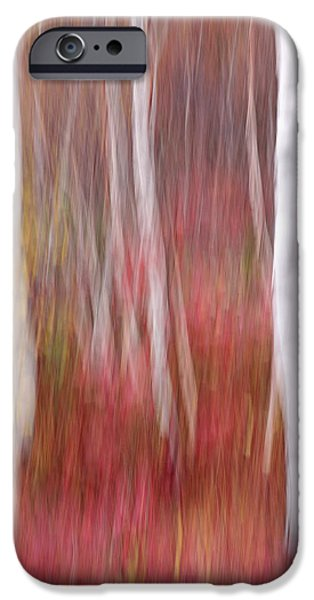 Impressionist Photography iPhone Cases - Birch Trunks-Abstract iPhone Case by Thomas Schoeller