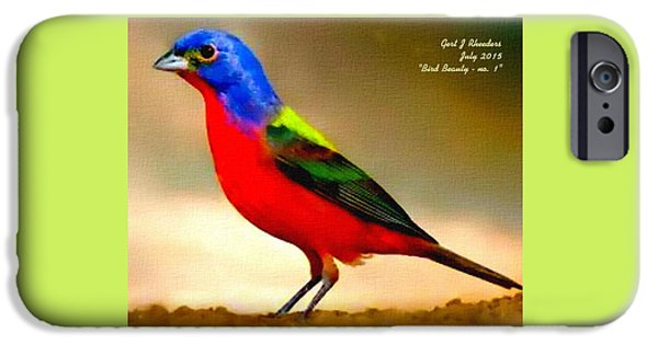 Abstract Digital Paintings iPhone Cases - Bird Beauty - no. 1 H A iPhone Case by Gert J Rheeders