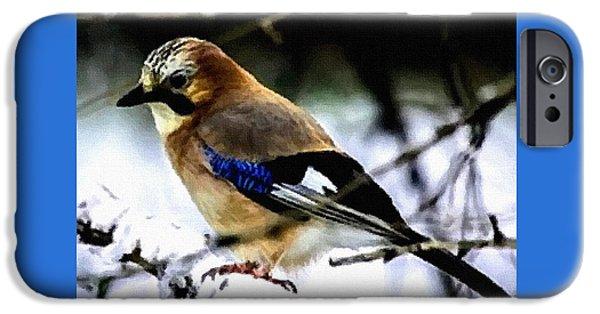 Abstract Digital Paintings iPhone Cases - Bird Beauty - no. 2 H B iPhone Case by Gert J Rheeders